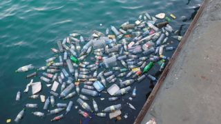 plastic bottles in the ocean