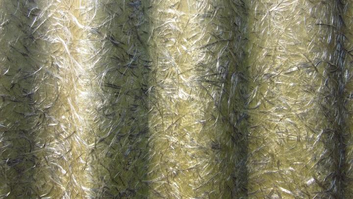 Seaweed plastic