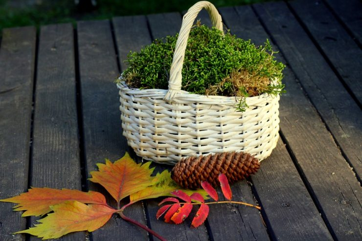 Reusable basket